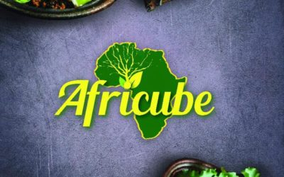 Ahouenou an African Start up !